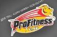 profitnes